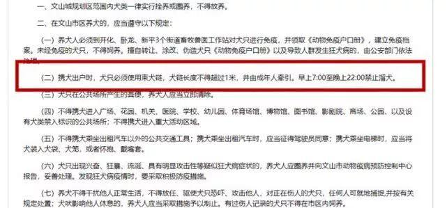 Fine 1,000RMB For Dog Walking Without A Muzzle!