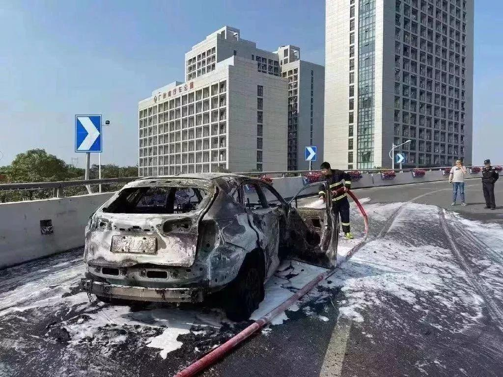 Your Car is on Fire! Driver Shouts and Stops A Car on the Road